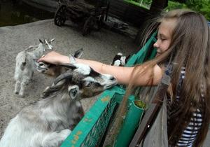 Прокуратура не выявила нарушений условий содержания животных в Киевском зоопарке