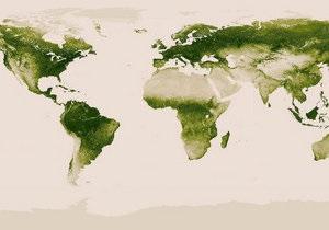 Новости науки: Ученые составили Карту растительности на Земле