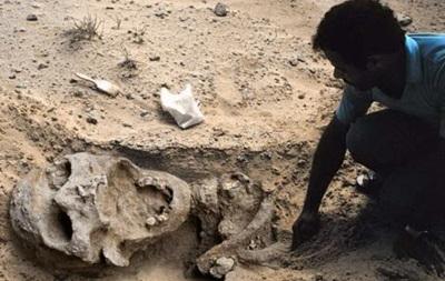 Ученые объяснили вымирание гигантских человекоподобных обезьян
