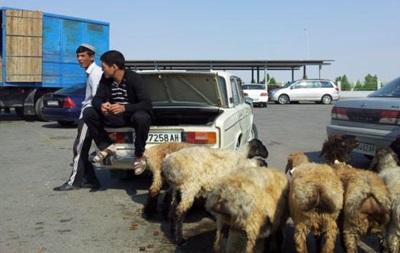 В Туркмении госпредприятие выдало зарплату баранами