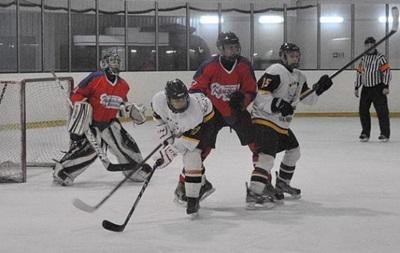 Хоккей: Белый Барс побеждает и наступает Витязю на пятки