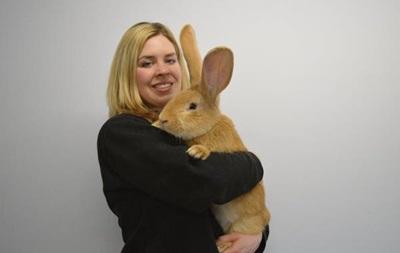 В Шотландии гигантскому кролику ищут дом