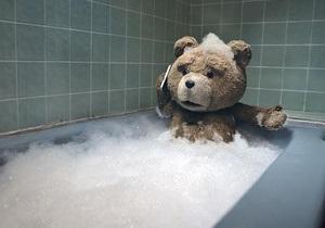 Плюшевый медведь обошел стриптизера в американском прокате