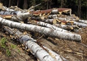 Суд обязал киевлянку возместить 116 тыс грн за срубленные деревья