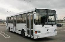 В Киеве планируют запуск ночных автобусов