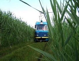 Новости Одессы - В Одессе приостановил движение популярный камышовый трамвай из-за кражи проводов