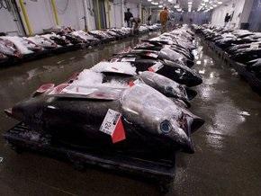 ООН закрывает порты для браконьеров