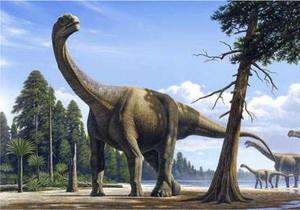 DW: Как брахиозавр похудел вдвое
