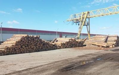 В Одесской области прекращен незаконный экспорт древесины