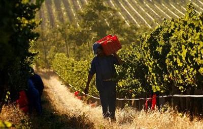 В ЮАР будут экспроприировать земли у белых