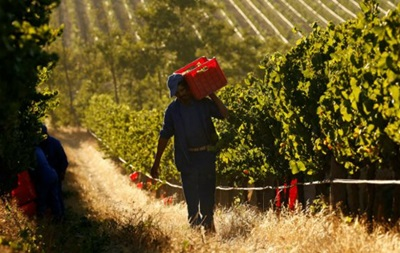 У ПАР схвалили закон про експропріацію землі білих фермерів