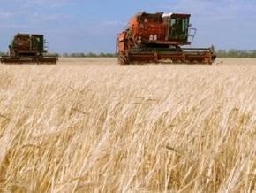 Украина может экспортировать 17 млн тонн зерна в этом маркетинговом году