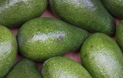 Неурожай авокадо в Новой Зеландии привел к росту необычных краж