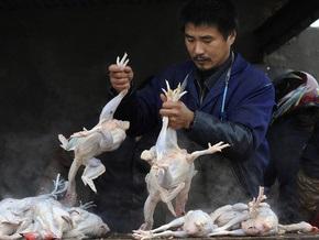В Китае зарегистрирован шестой случай заражения птичьим гриппом