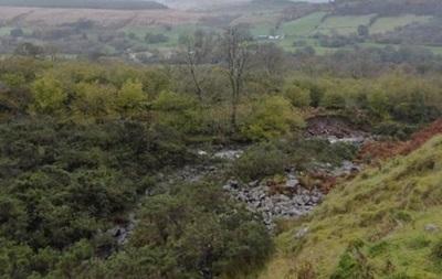 В горах Уэльса потерялись 24 ребенка