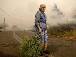 Лесные пожары приблизились к Афинам