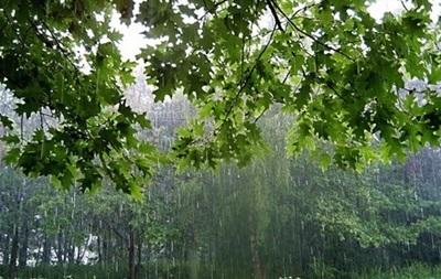 Неделя в Украине начнется с дождями и грозами