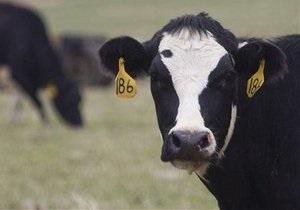 Производитель молочных продуктов с активами в Украине планирует IPO