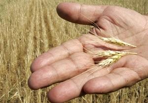 Урожай зерновых в 2012 году в Украине составил 46,2 млн тонн