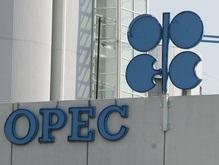 ОПЕК может помочь Украине подготовиться к Евро-2012
