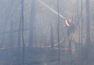Попов поручил обеспечить надлежащую охрану киевских лесов от пожаров