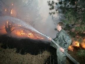 В Житомирской области загорелся лес: огонь охватил полтысячи гектаров