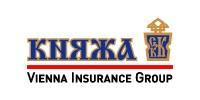 Итоги работы  Уск  Княжа Vienna Insurance Group  за 12 месяцев 2009 года