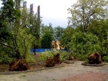 Над Львовом пронесся мощный ураган, есть жертвы (обновлено)