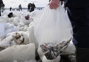 В Киевском море погибло более 50% рыбы