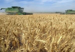Урожайность зерновых в Украине в разы ниже европейских показателей - Ъ
