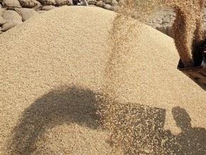 Власти сделали прогноз по урожаю зерновых в Украине в этом году