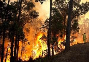 В Сибири горит 11 тысяч гектаров леса