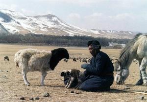 Глухонемой азербайджанский пастух, заблудившись, перешел границу с Арменией