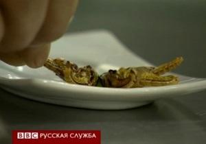 Би-би-си: Можно ли заменить мясо сверчками?