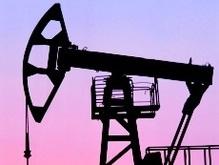 Крупнейшим в мире производителем нефти остается РФ