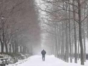 Снегопады в США продолжаются: четыре человека погибли