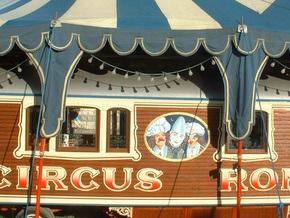 В Германии обрушилась переполненная трибуна цирка