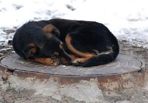 Жители домов в трех районах Киева остались без воды