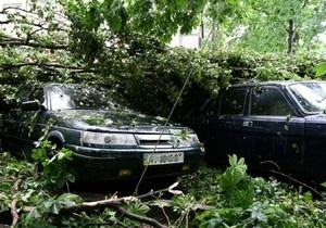 В Киеве над Соломенкой пронесся ураган. Повреждены деревья и автомобили