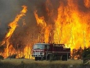 Жертвами лесных пожаров в Австралии стали 108 человек