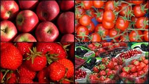 Британские СМИ: стране нужны аграрии из Украины