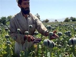 Вашингтон признал неэффективность борьбы с производством наркотиков в Афганистане