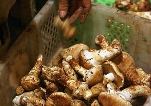 В Винницкой области на поминках девять человек отравились грибами