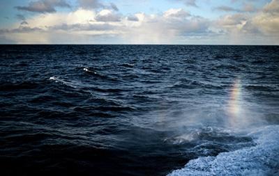 Убельгийского побережья нашли подводную лодку времен Первой мировой войны