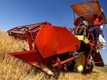 Мировой продовольственный кризис закончится осенью
