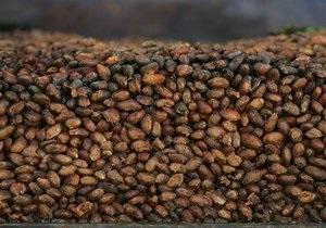 Североамериканские индейцы научились готовить шоколад на 300 лет раньше, чем считалось