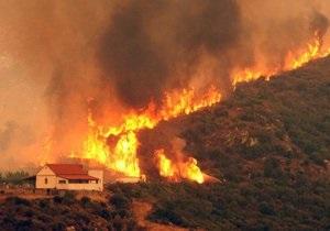 Греция расследует информацию о причастности спецслужб Турции к поджогам лесов