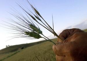 Ъ: Кабмин может обязать зернотрейдеров финансировать выращивание зерна