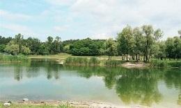 В Киеве в озере утонула женщина