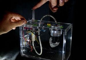 Plantoid. Итальянцы сконструировали робота-растение